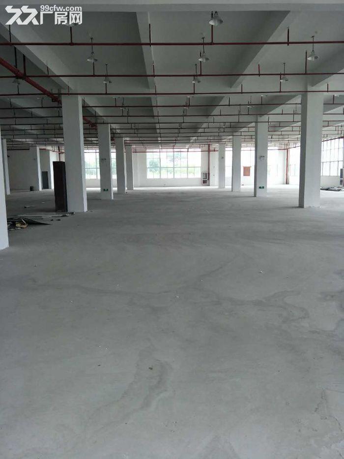 一手房东渭塘新出底楼厂房1100平方可分割-图(2)