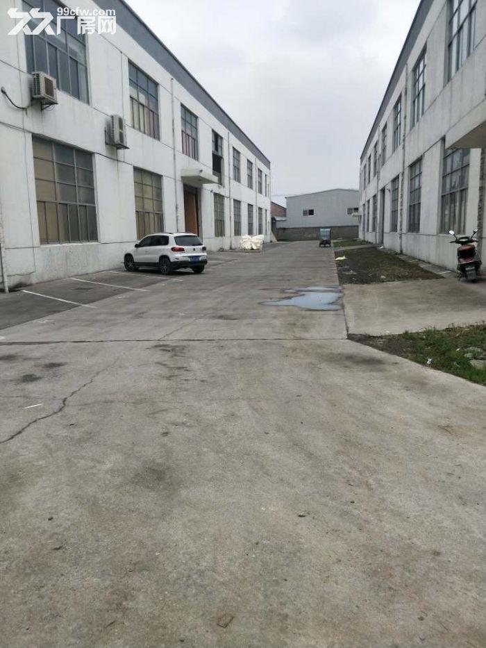 一手房东渭塘新出底楼厂房1100平方可分割-图(4)