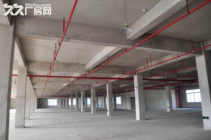 300−3000㎡凤岭东站旁产业园,厂房办公综合体,50年产权-图(2)