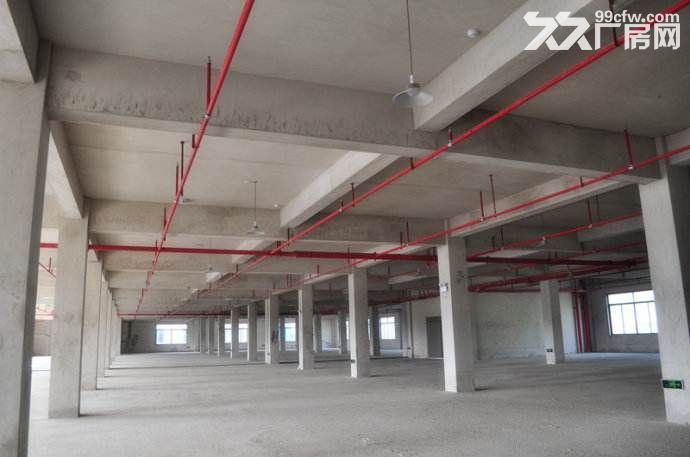 300平~20000标准厂房,配备员工宿舍和食堂-图(2)