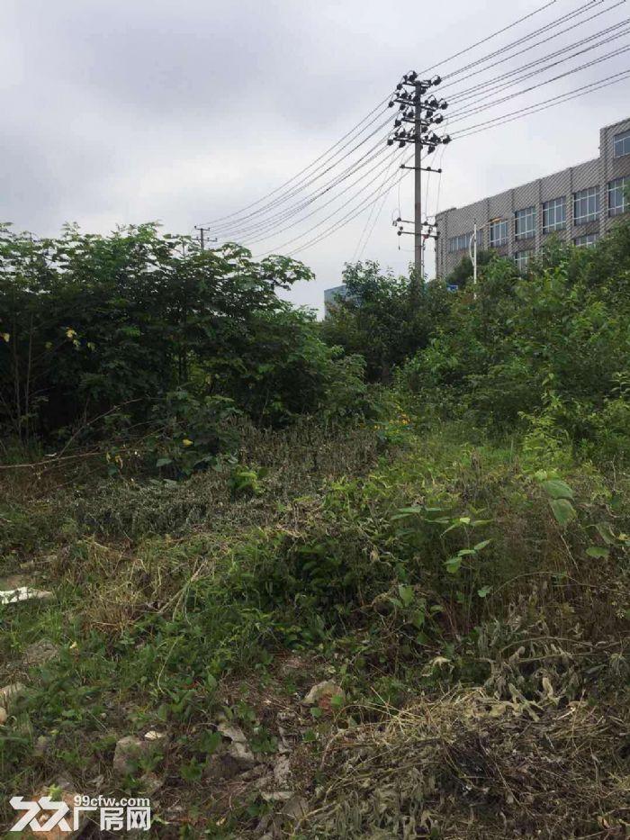 出售望城经开区管委会附近24亩地,基本无建筑-图(5)