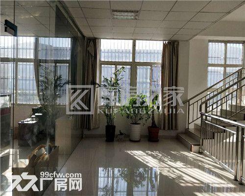 蓬朗镇原房东1楼3000平厂房出租证件齐全、无公摊、价格便宜-图(3)