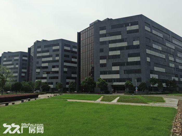 萧山开发区附近靖江全新2万方厂房招租价格低至16块-图(1)
