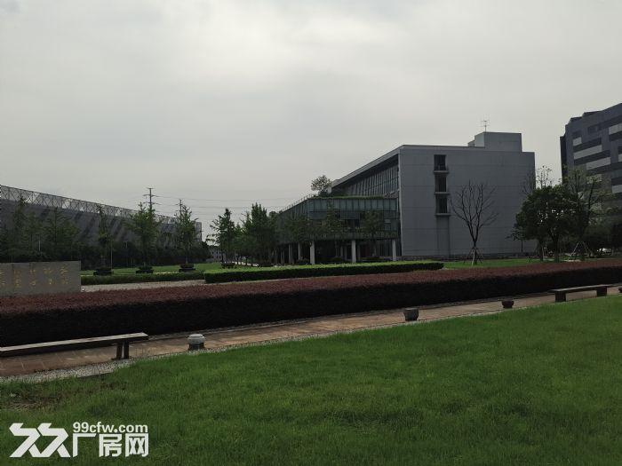 萧山开发区附近靖江全新2万方厂房招租价格低至16块-图(2)