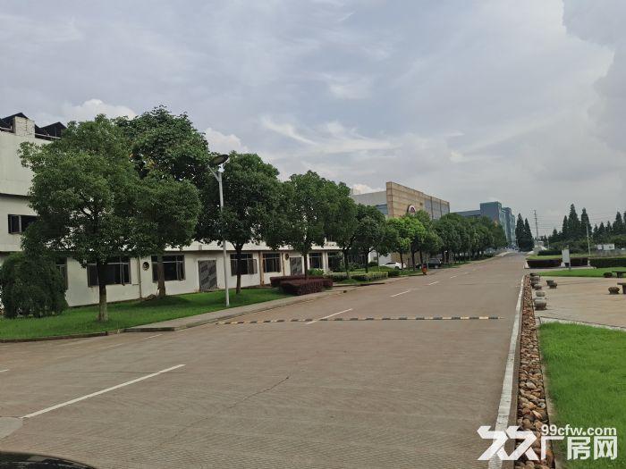 萧山开发区附近靖江全新2万方厂房招租价格低至16块-图(3)