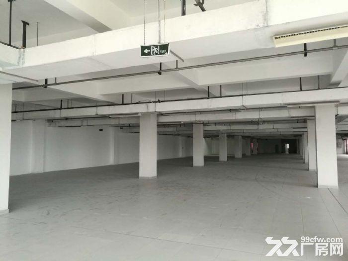 萧山开发区附近靖江全新2万方厂房招租价格低至16块-图(5)