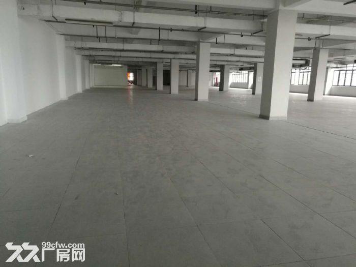 萧山开发区附近靖江全新2万方厂房招租价格低至16块-图(7)