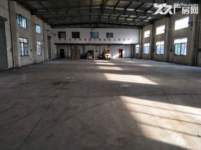 周市镇单层700平仓库出租-图(2)