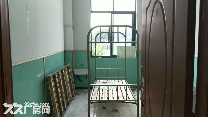 蓬朗镇独门独院1100平幼儿园出租证件齐全-图(2)