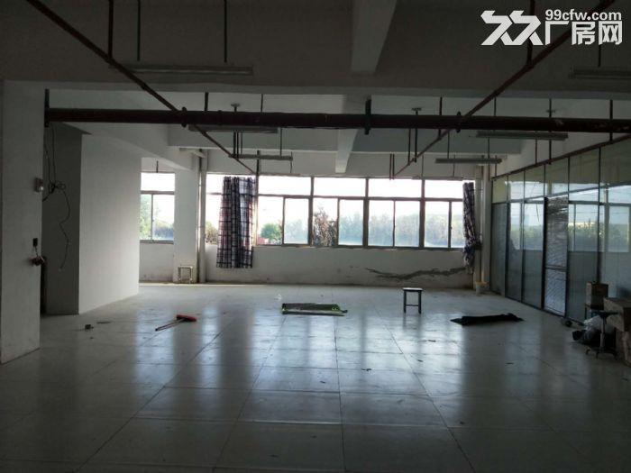蓬朗镇独栋2层1000平厂房出租证件齐全-图(3)