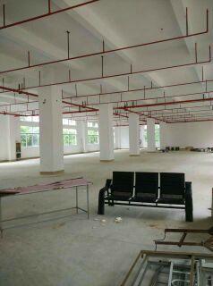 (出租)新空带消防喷淋仓库招租、面积可以分租、一楼带货台-图(2)