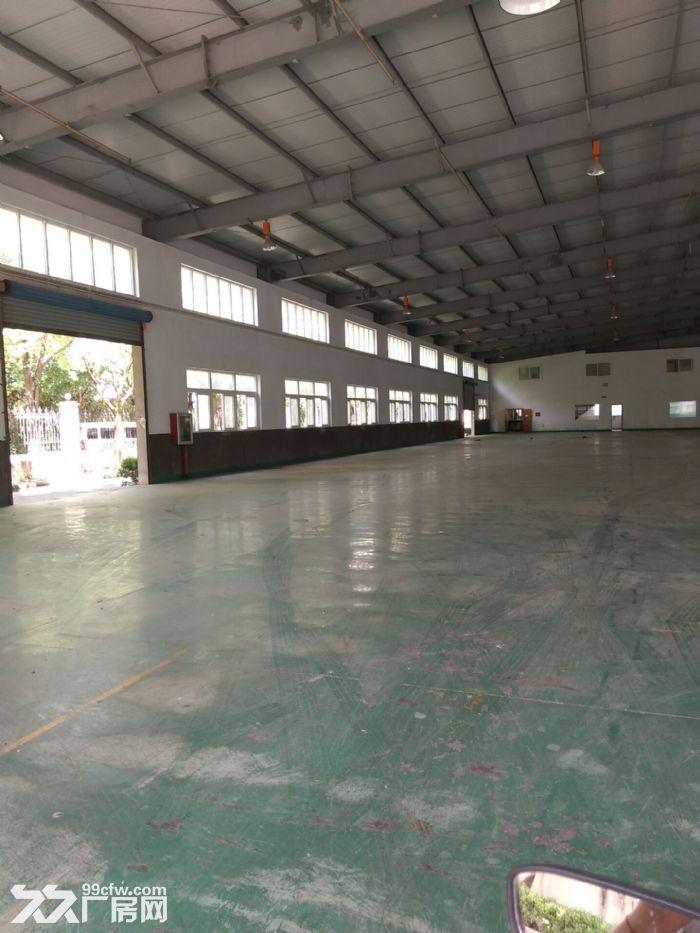 嘉定徐行新出标准厂房1800平,全新环氧地坪,层高8米,300起分,交通方便-图(4)