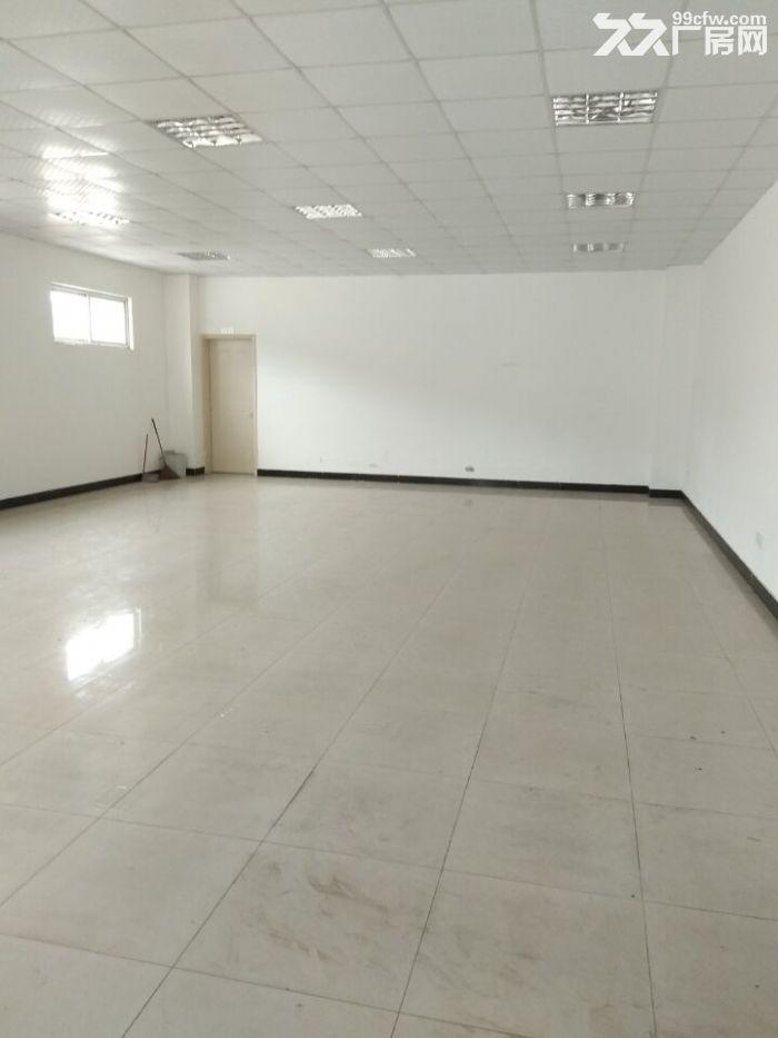 独门独院厂房1500平,地属104板块绿证厂房,带行车,全新环氧地坪-图(3)