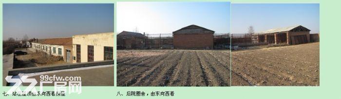 齐齐哈尔雅尔塞镇哈雅村厂房大院出卖-图(1)