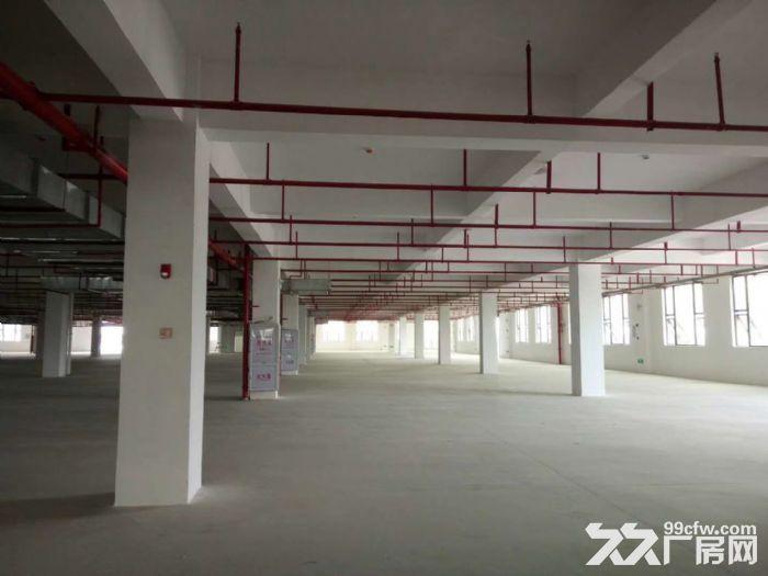 后溪工业组团附近标准1楼厂房1000平出租-图(1)