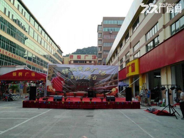柳州银桐商业广场仓库招租-图(3)