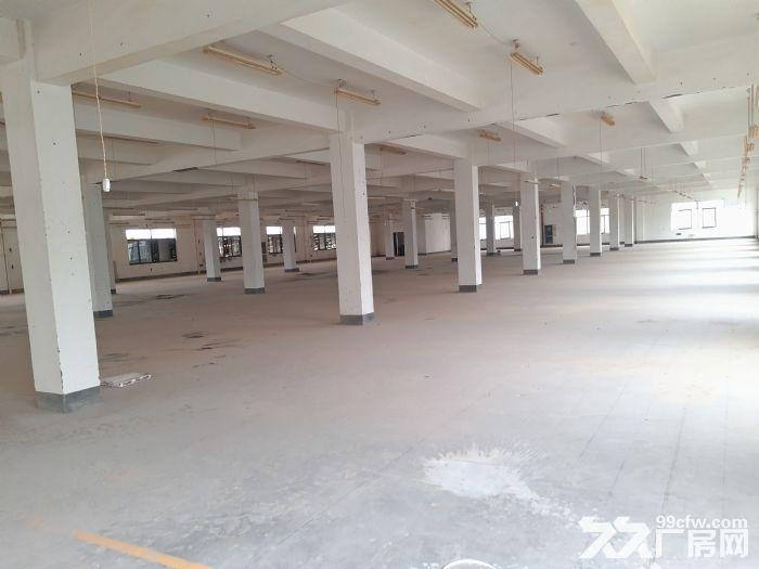 萧山开发区高新九路整层一千平一栋共五层一层起租有食宿-图(3)
