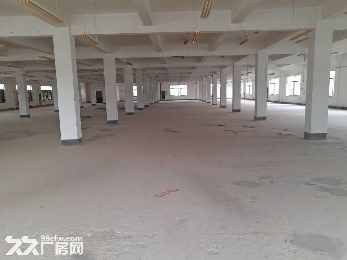 萧山开发区高新九路整层一千平一栋共五层一层起租有食宿-图(4)