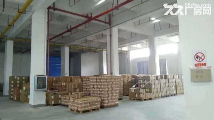10000平米三层砖混厂房招租,整租分租皆可-图(2)