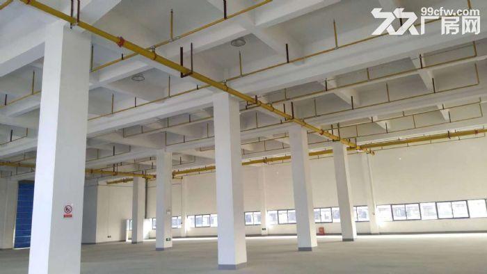 10000平米三层砖混厂房招租,整租分租皆可-图(3)