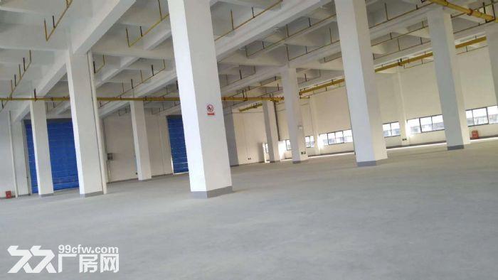 10000平米三层砖混厂房招租,整租分租皆可-图(5)