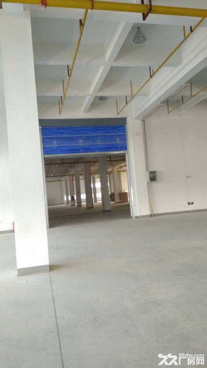 10000平米三层砖混厂房招租,整租分租皆可-图(4)