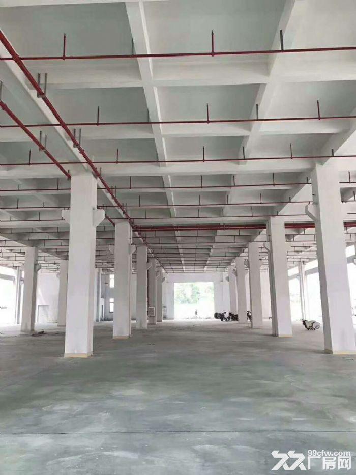 横栏独院7万方标准厂房招租可分租-图(2)