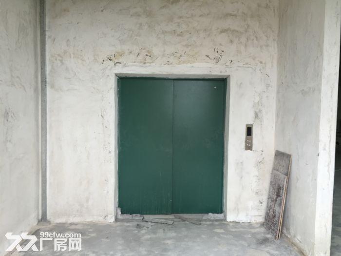 新华工业园现有15000m超大标准厂房出租-图(6)