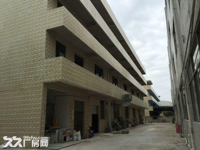 新华工业园现有15000m超大标准厂房出租-图(8)