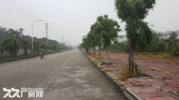 花东镇独院钢构5000平米出租可进大车-图(2)