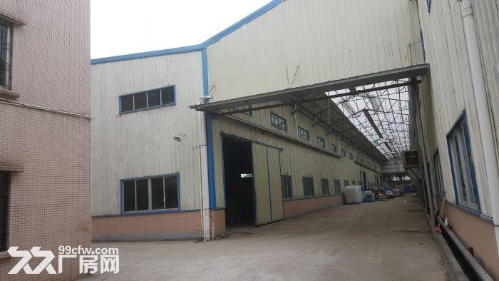 新华工业区独门独院厂房出租,可分租-图(6)