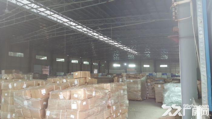 新华工业区独门独院厂房出租,可分租-图(7)