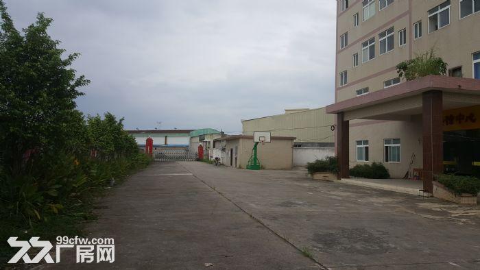 现新华工业园内6000m出租-图(4)