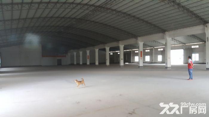 现新华工业园内6000m出租-图(5)