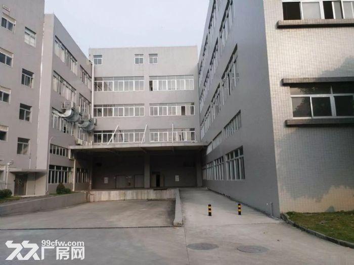 火炬开发区全新一楼厂房3700方招租高6米-图(3)