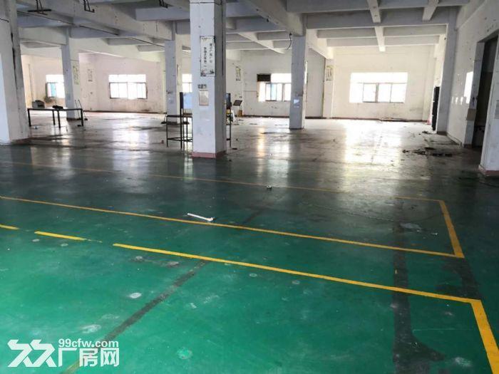 龙岗中心城独门独院厂房12800平出租可分租-图(6)