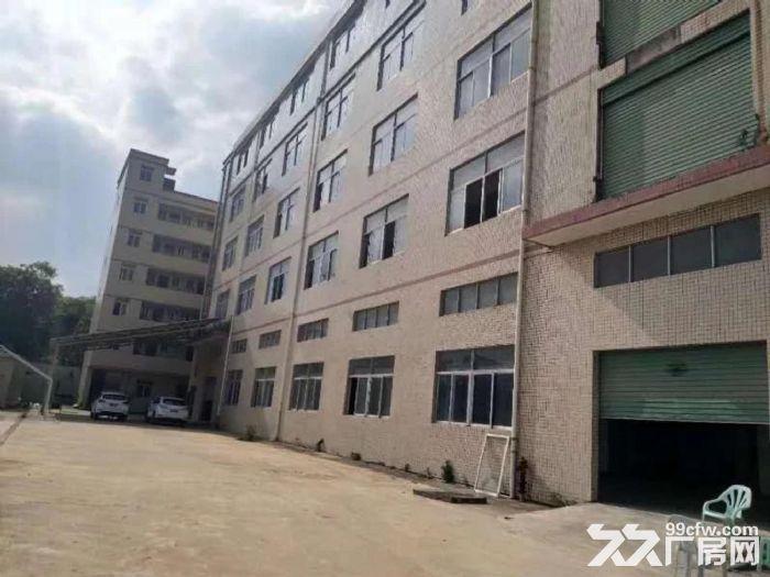 龙岗中心城独门独院厂房12800平出租可分租-图(1)