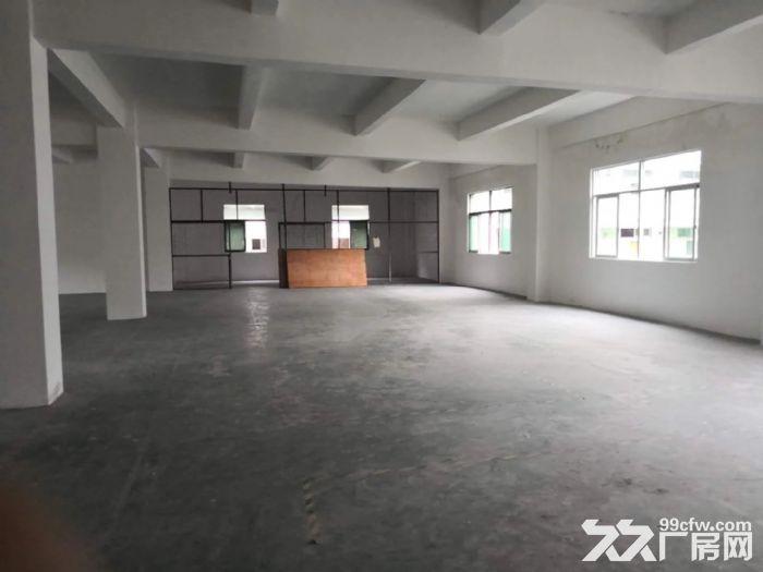 龙岗中心城独门独院厂房12800平出租可分租-图(4)
