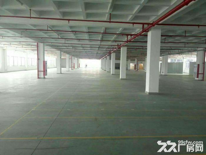 晋江独门独院钢结构20000平方出租,标准厂房40000平方出租-图(1)
