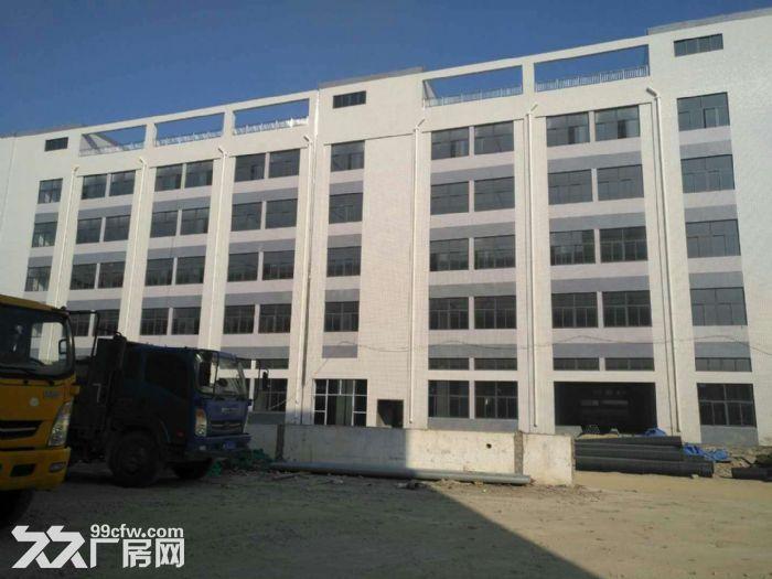 大霞美标准厂房38000平方,钢结构31000平方出租。-图(1)