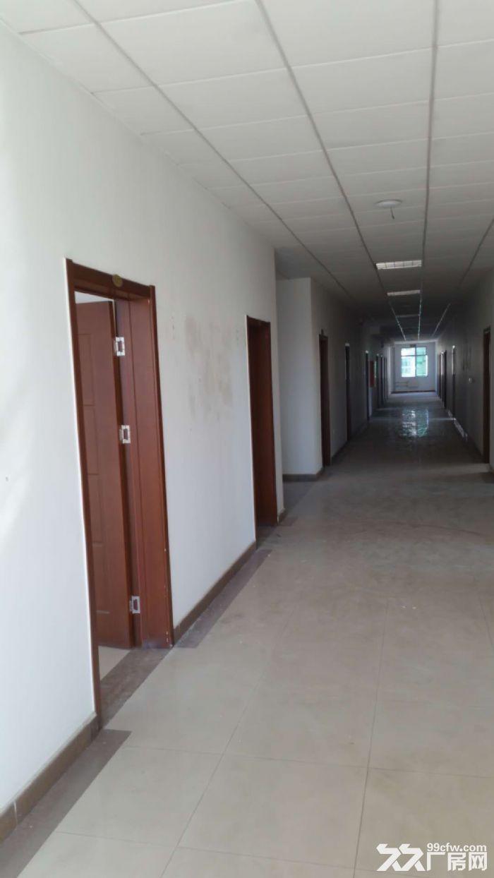 亦庄南区厂办一体厂房2500平高8米独栋办公楼3100平可分800-图(3)