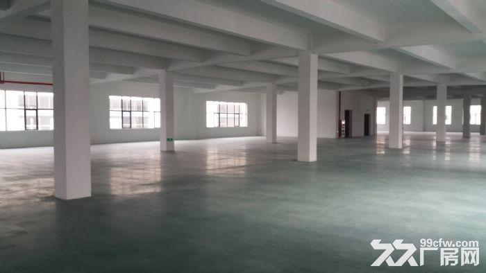 直招单层2000平整栋8000平厂房新房-图(1)