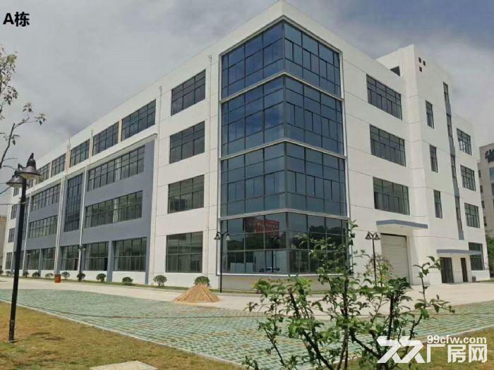 直招218平至500平办公厂房仓库,新房-图(2)
