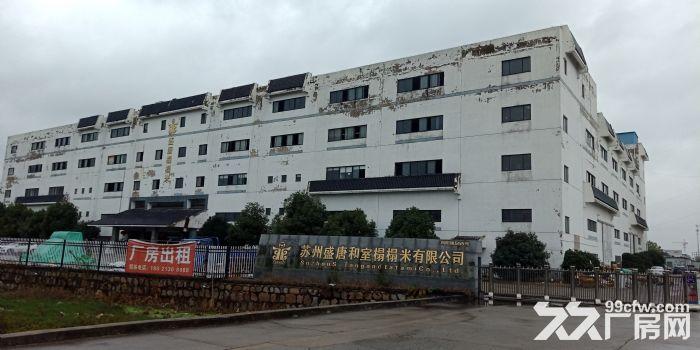 苏州相城区渭塘镇超大厂房出租-图(3)