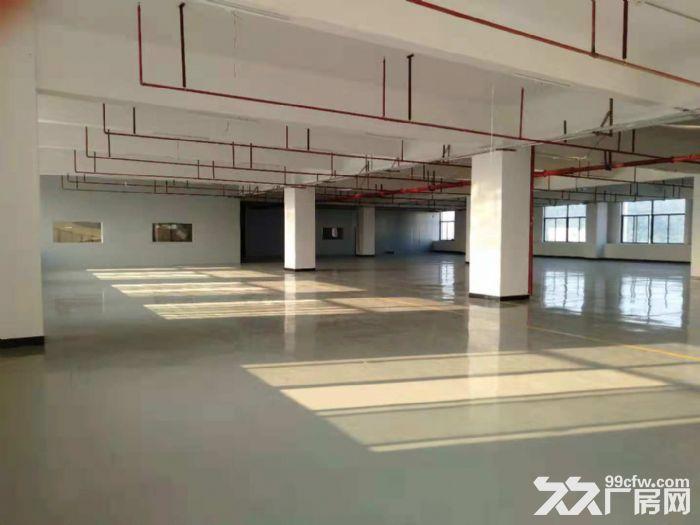 凤岗官井头精装修厂房出租2700平方,全新装修-图(2)