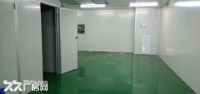 清溪九乡百级无尘车间出租2400平方,不用转让费-图(4)