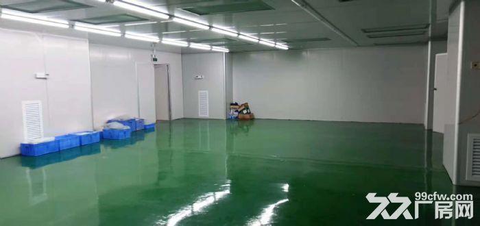 清溪九乡百级无尘车间出租2400平方,不用转让费-图(3)