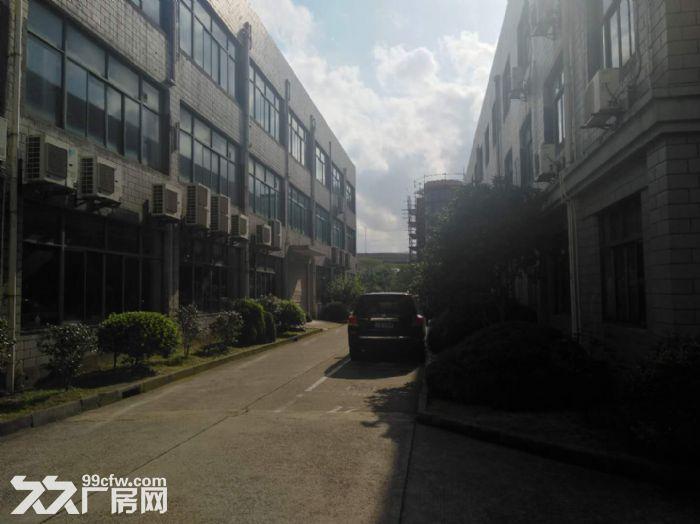 中环企业湾!环评厂房,办公园区直招,共8千平可分租-图(3)
