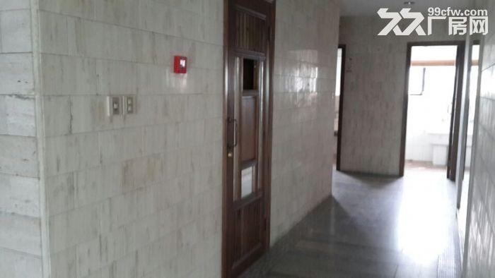 (出租)金桥104地块双层1000平精装研发带办公室出租-图(1)