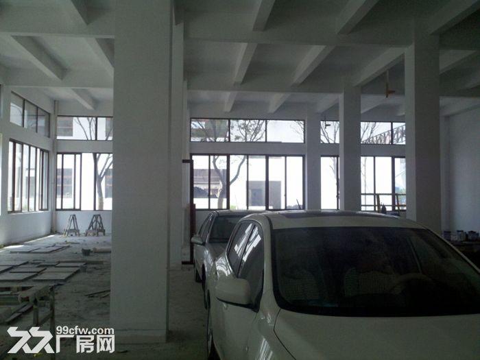 (出租)金桥104地块双层1000平精装研发带办公室出租-图(4)